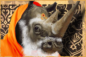 The Ultimate Marketing Guru: The Rhino
